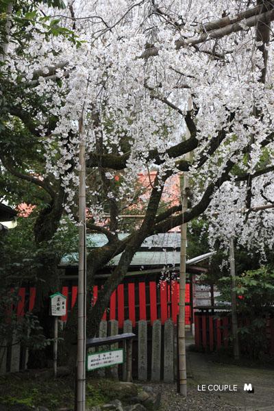 KURUMAZAKI-005