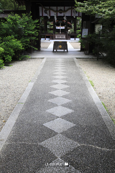 NASHINOKI-005
