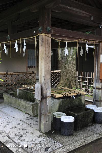 NASHINOKI-015