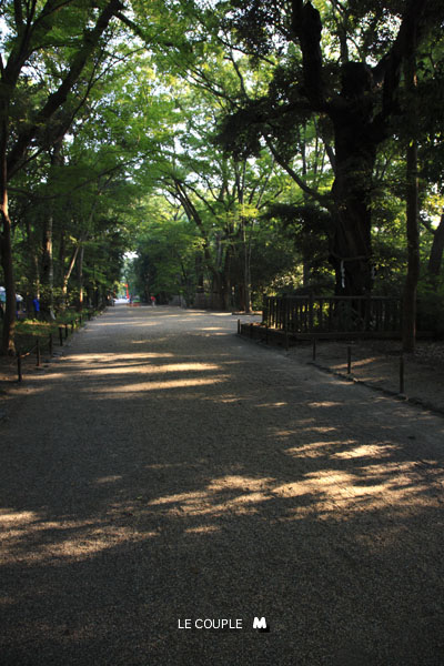 TADASUNOMORI-003
