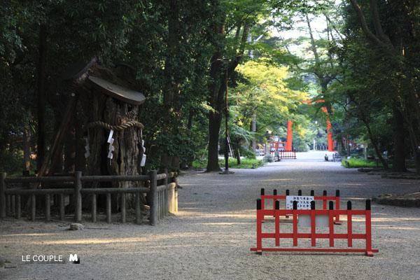 TADASUNOMORI-017