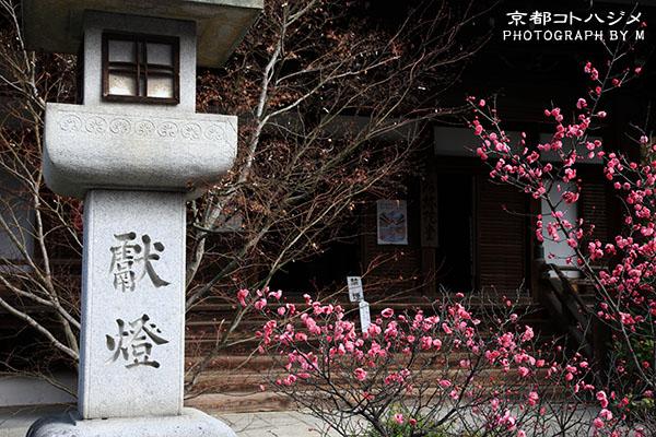 SEIRYOUJI-001
