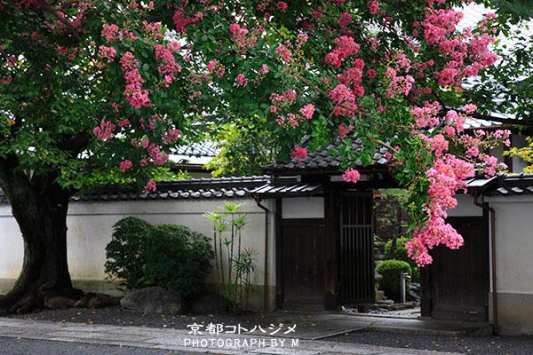 HONRYUJI-022