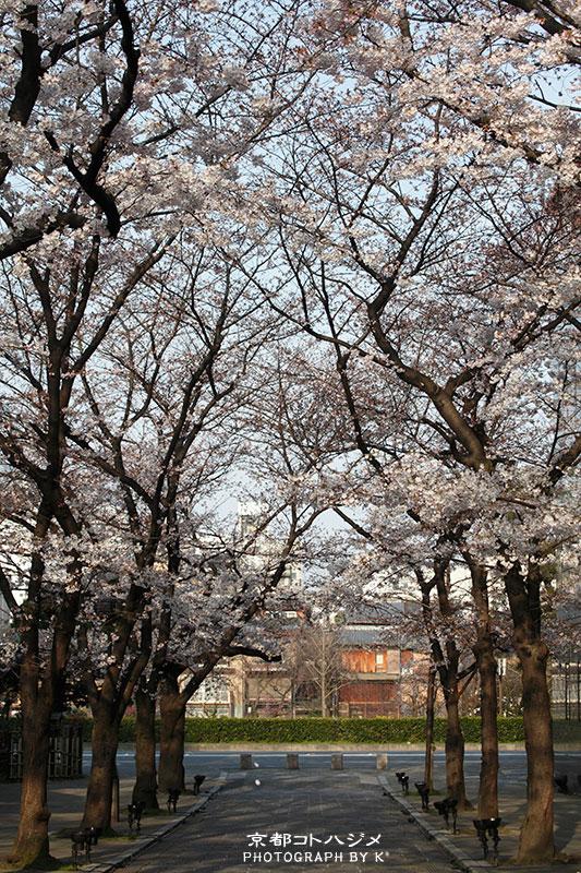 GIONSHIRAKAWA-010